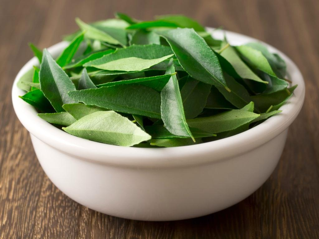 Neem Leaves for Acne