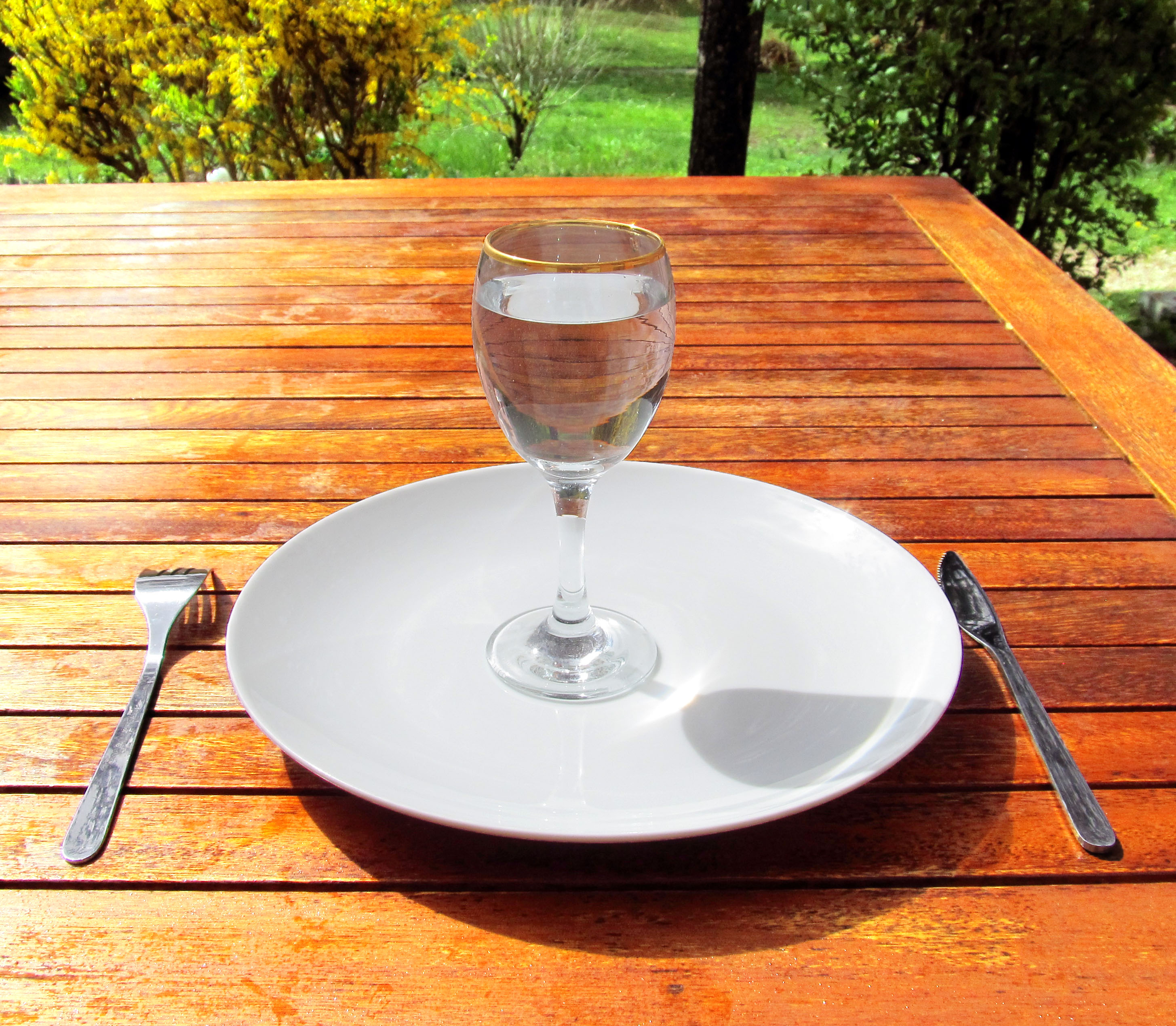 Meals Water before food